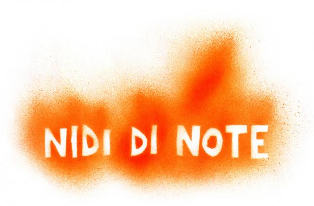 nididinote.jpg