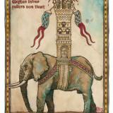 elephas Biz.jpg